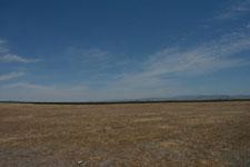 ヨセミテ国立公園の草原の画像006