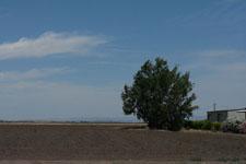 ヨセミテ国立公園の草原の画像007