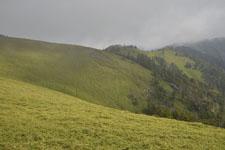 剣山の山の画像003