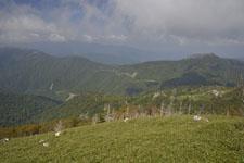 剣山の山の画像007