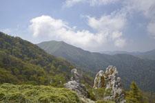 剣山の山の画像008