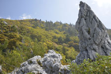 剣山の山の画像009