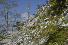 剣山の山の画像011