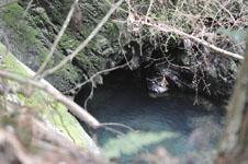 剣山の川の画像002