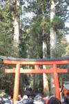 箱根神社の初詣の画像003