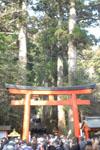 箱根神社の初詣の画像004
