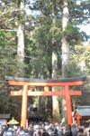 箱根神社の初詣の画像005