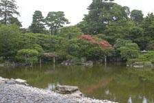 京都御所の庭園の画像001