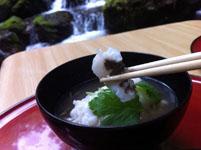 京都府貴船の川床の料理の画像004