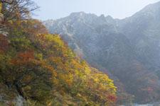大山の紅葉の画像052