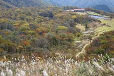 大山の紅葉の画像060