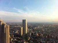 新宿の高層ビル群の画像001