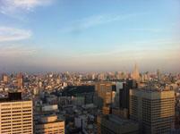 新宿の高層ビル群の画像002