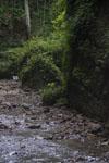 伊尾木洞の画像011