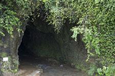 伊尾木洞の画像015