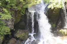滝と新緑の画像002