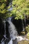滝と新緑の画像003