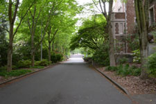 ワシントン大学の画像027