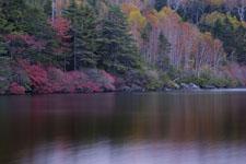 長野の紅葉の画像006