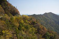 瓶ヶ森の紅葉の画像007