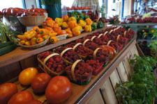 ケベックの果物の野菜の画像003
