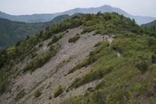 西赤石山の山の画像009