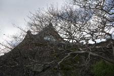 早明浦の家の画像002