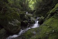 床鍋谷の川の画像003