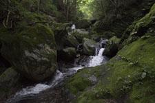 床鍋谷の川の画像004