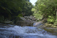 滑床渓谷の川の画像007