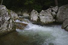 滑床渓谷の川の画像009