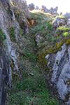 佐川の草の岩の画像010