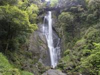 滝の画像026