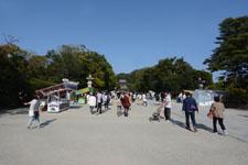 鎌倉の公園の画像001