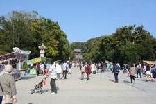 鎌倉の公園の画像002