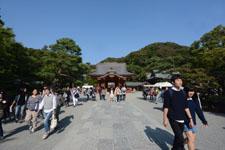鎌倉の鶴岡八幡宮の画像001