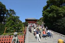 鎌倉の鶴岡八幡宮の画像002