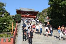 鎌倉の鶴岡八幡宮の画像003
