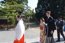 鎌倉の鶴岡八幡宮の画像009