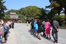 鎌倉の鶴岡八幡宮の画像011