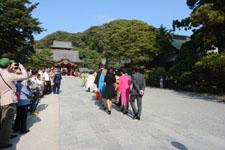 鎌倉の鶴岡八幡宮の画像012