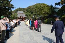 鎌倉の鶴岡八幡宮の画像013