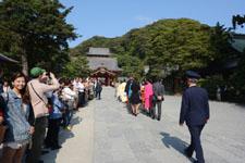 鎌倉の鶴岡八幡宮の画像014