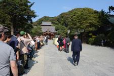 鎌倉の鶴岡八幡宮の画像015