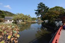 鎌倉の鶴岡八幡宮の画像016