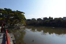 鎌倉の鶴岡八幡宮の画像018