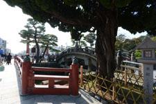 鎌倉の鶴岡八幡宮の画像019
