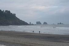 ラ・プッシュの海岸と島の画像003