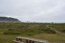 ラ・プッシュの海岸と流木の画像005