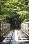 屋久島の橋
